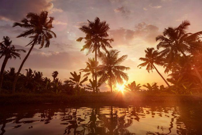 Perché il Kerala dovrebbe essere nella tua lista dei viaggi