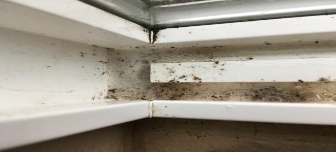 Come pulire i telai delle finestre e i corridori in