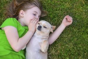 I motivi principali per amare il tuo animale domestico