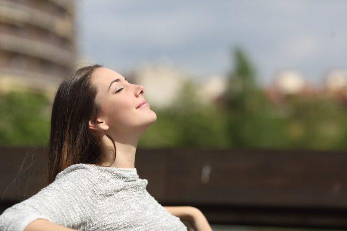 Perché dovresti avere un sistema di gestione dello stress