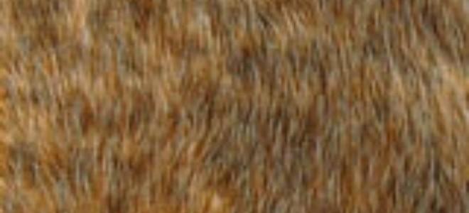Come pulire un tappeto in pelle dorso