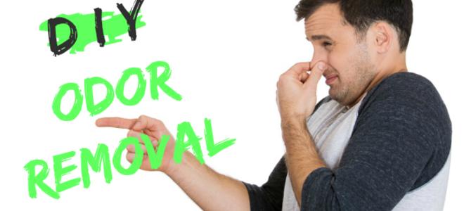 Cosè quellodore Identificazione ed eliminazione degli odori domestici comuni