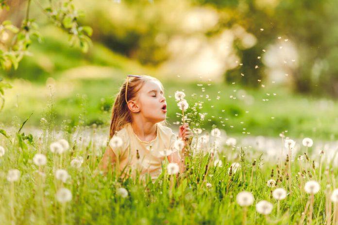 Sono arrivate le allergie stagionali come difendersi