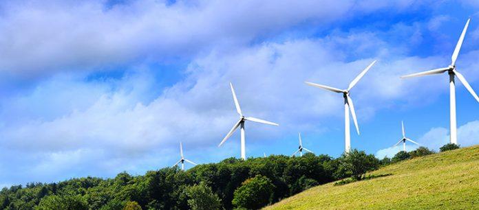 Ottieni il massimo dal tuo fornitore di energia rinnovabile