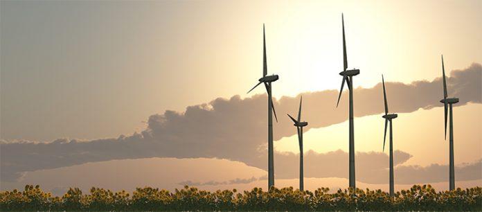 Riduci i costi con un fornitore di energia rinnovabile