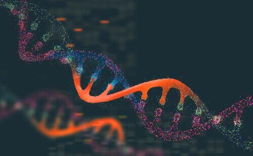 Genetica della popolazione animale che cosè