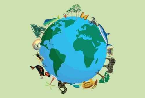 Quante specie animali ci sono sul pianeta
