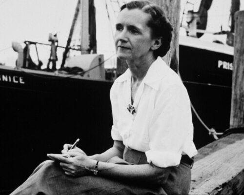 Rachel Carson Unispirazione per Greta Thunberg