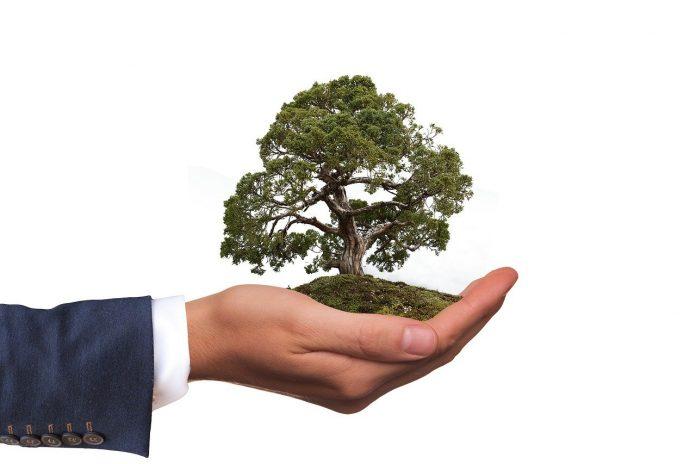 semplici modi per uno stile di vita ecologico