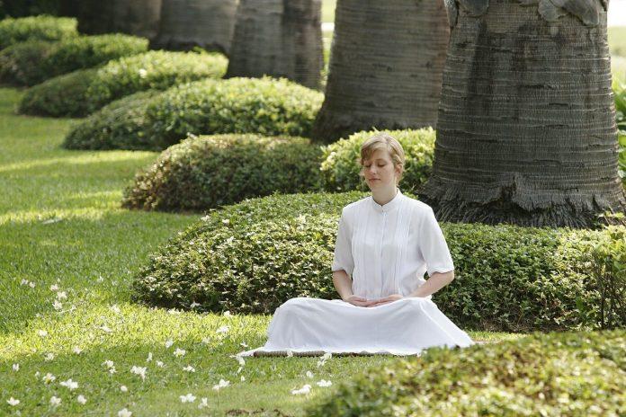 Giardino della meditazione una nuova caratteristica indispensabile per il tuo