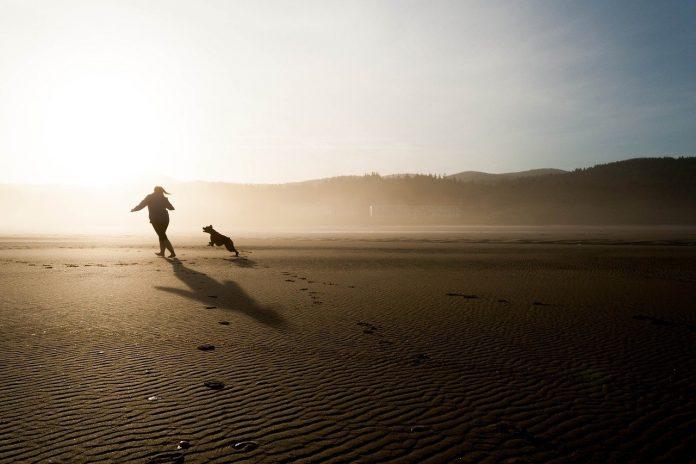 Razze canine diverse richiedono un approccio diverso alladdestramento